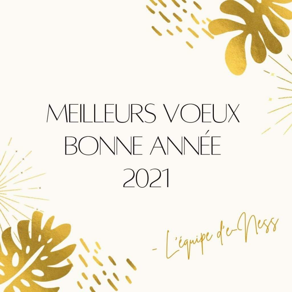 Meilleurs voeux bonne annee 2021 1 - Meilleurs vœux pour 2021 !